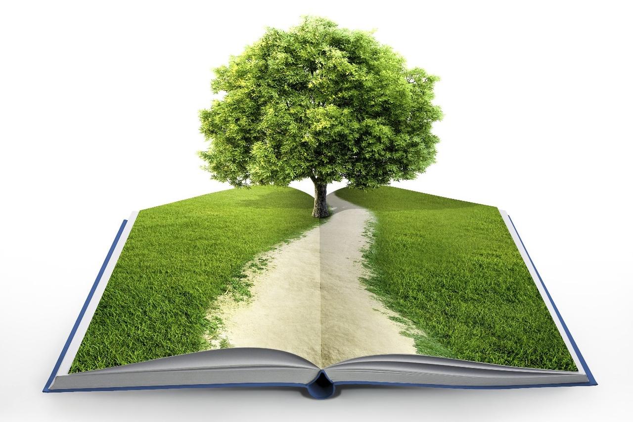 Дерево макулатура картинки