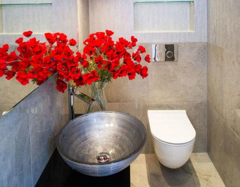 Всемирный день туалета — не розыгрыш, а совершенно необходимый праздник