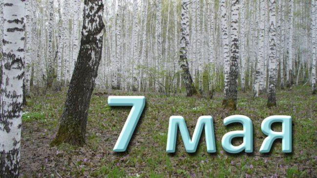 7 мая