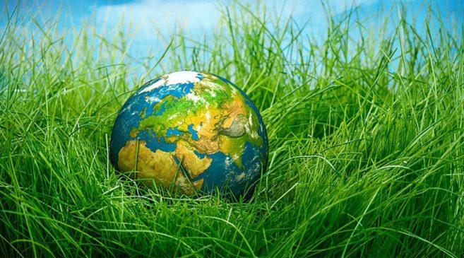 Этот День призван привлечь внимание человечества к проблеме сохранения среды обитания фауны планеты Земля