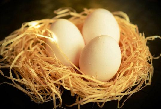 Праздник всех любителей яиц