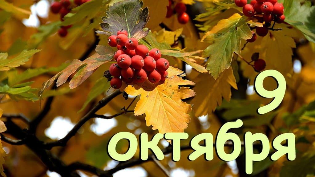 9 октября календарь